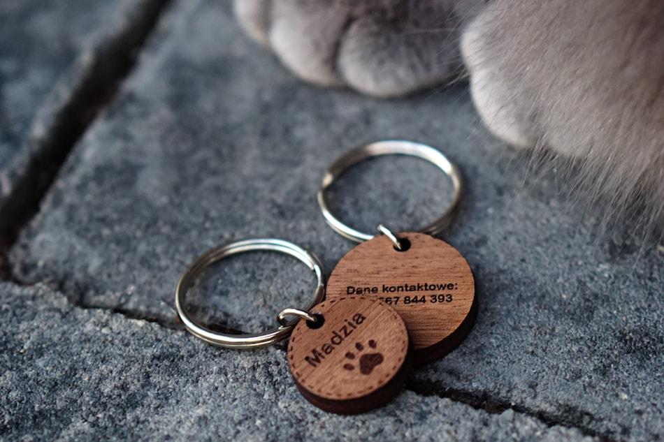 Adresówki dla psa i kota - jak pomagają psom w potrzebie?