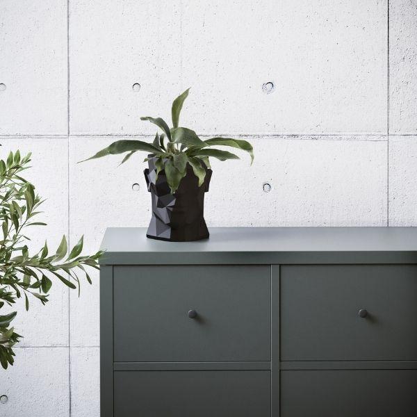 marki plantwear