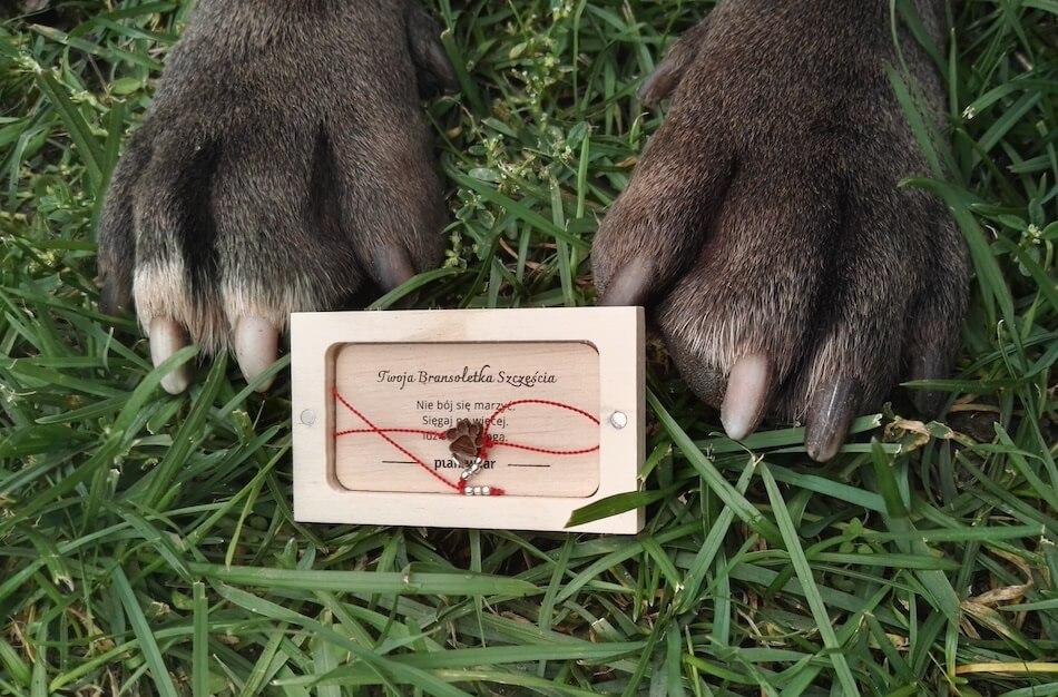 bransoletka psia łapka (1)