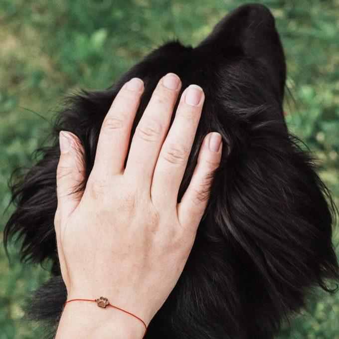 bransoletka z psią łapką